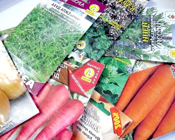 Фото - 10 Поширених помилок при виборі насіння