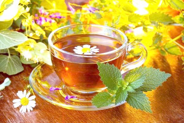 Багато хто любить трав'яний чай