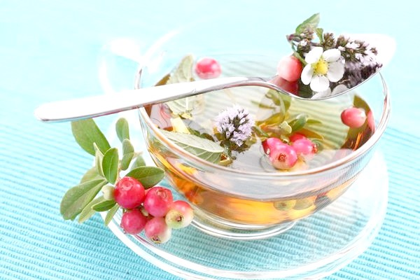 Багато трави, квіти та ягоди використовуються для приготування чаю