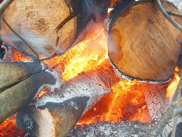 Багаття з вільхових дров. Фото з сайту drovavoz.ru