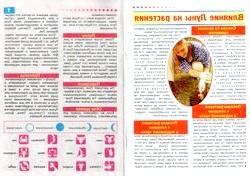 Грудень: календар садівника
