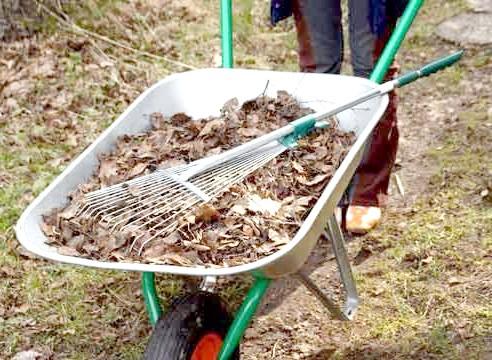 Прибирання опалого листя