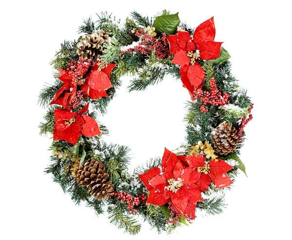 Пуансеттия - одне з традиційних різдвяних рослин