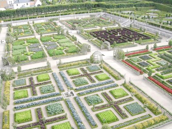 Як адаптувати геометрічний город під маленьку ділянку