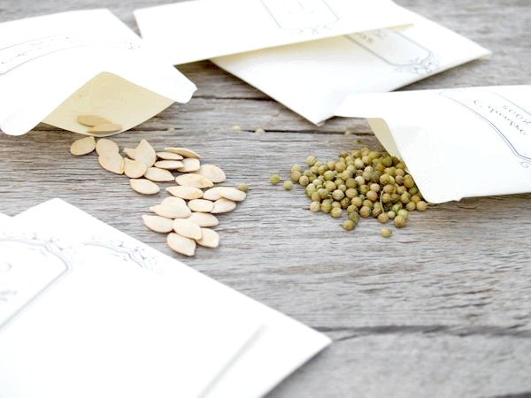 Фото - Як купувати насіння в інтернеті