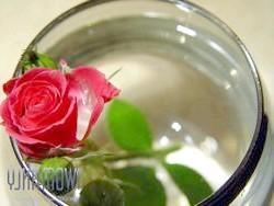 Як зберегти зрізані троянди, щоб вони простояли у вазі максимально довго?