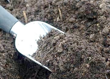 грунт для розсади та субстрати