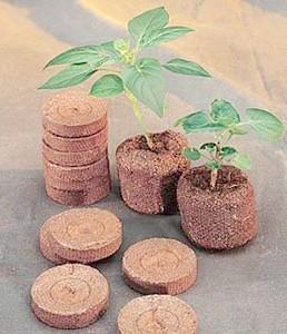торф'яні таблетки для розсади