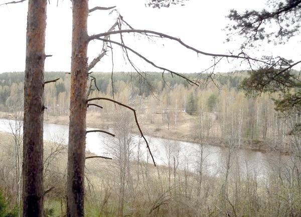 Весняна річка