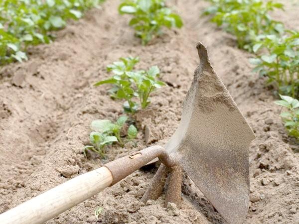 Розпушування - сухий полив