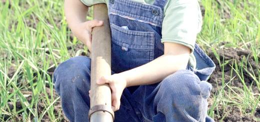 Фотографія титанової лопати, accbud.ua