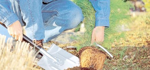 Знімок застосування багнетною лопати, eco-retail.com