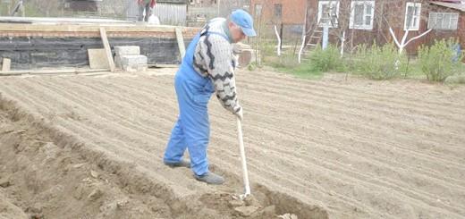 Фото застосування титанової лопати, auto.aviso.ua