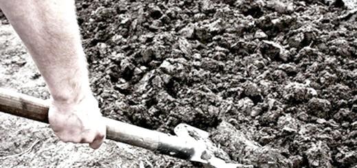 Зображення садової лопати, deita.ru