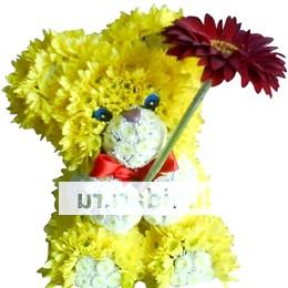 Фото - Подарунки з живих квітів - найоригінальніший подарунок