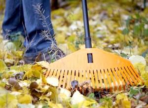 Фото - Підготовка городу саду до зими
