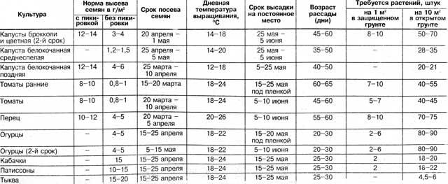 Розсада овочів, таблиця вирощування за планом
