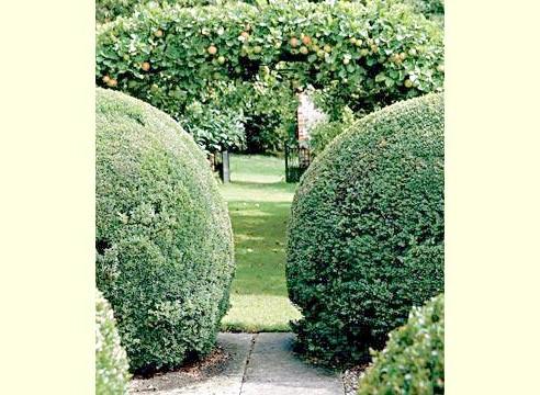 Сад Хілл Гарден, Великобританія