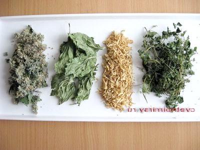 Сушка і зберігання лікарських рослин