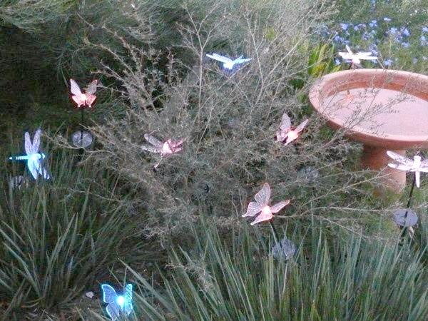Сяючі метелика в саду