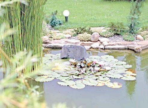 Озеро невелике декоративне з лататтям та ліхтарями для освітлення