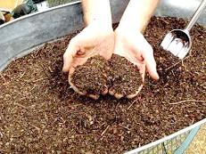 Земельні суміші для кімнатних рослин