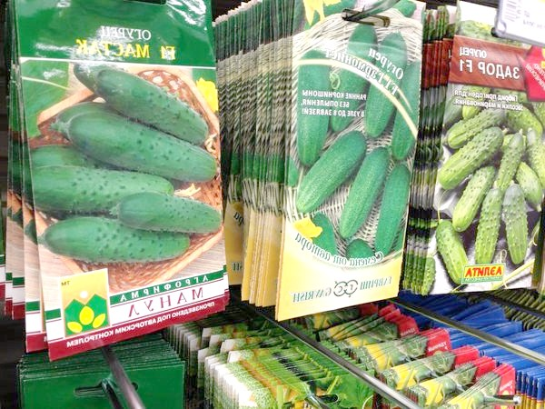 Фото - 10 Самих популярних виробників насіння