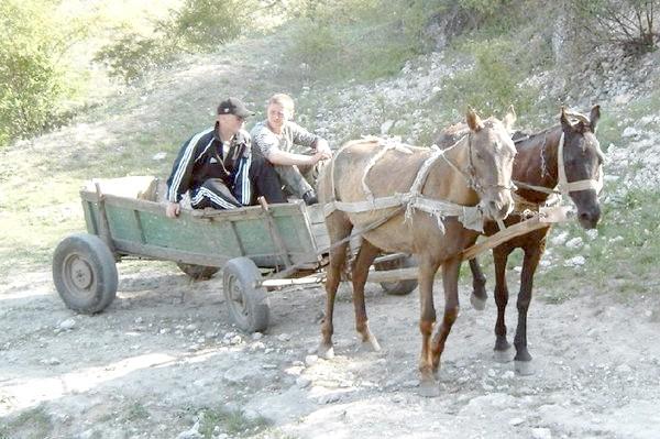 Фото - А в селі - коні
