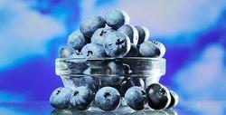 Фото - Що можна зробити з голубики, вино, варення, желе, сік