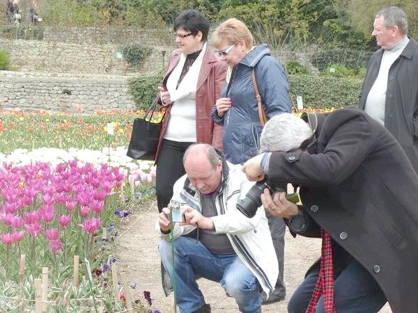 На виставці тюльпанів 5 квітня