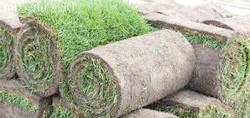 Фото - Газон в рулонах і штучна трава - укладання газону за технологією