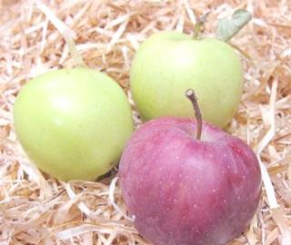 Фото - Як зберігати яблука взимку свіжими да подовше