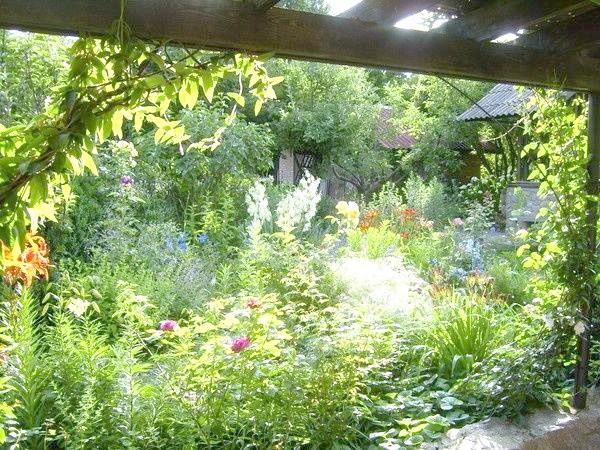 Сад став садом