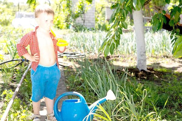 Маленький помічник на городі