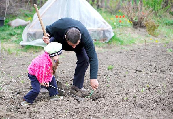 Головне правило облаштування дитячого городу: створюйте його разом з дитиною