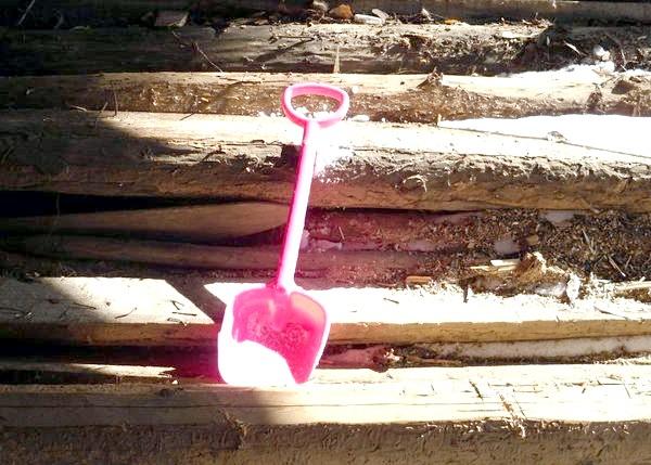 Фото - Як правильно зберігати садові інструменти взимку?