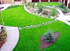 Фото - Як правильно зробити газон, як підготувати ділянку і вибрати травосуміш