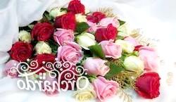 Фото - Як продовжити життя троянд з букета: чи можна укоренити їх і виростити?