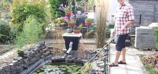 На фото ставок пластиковий садовий, segodnya.ua