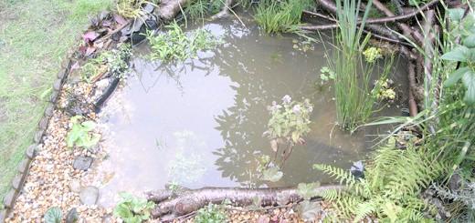 Зображення матеріалів для обробки водойм, sazhaemsad.ru