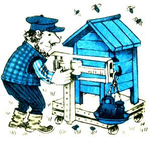 Коли прибирати бджіл у бджоляник, правильний догляд