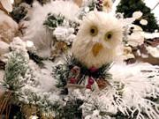 Різдво в Голландії