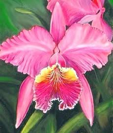 Орхідеї - утриманка Ніро Вульфа
