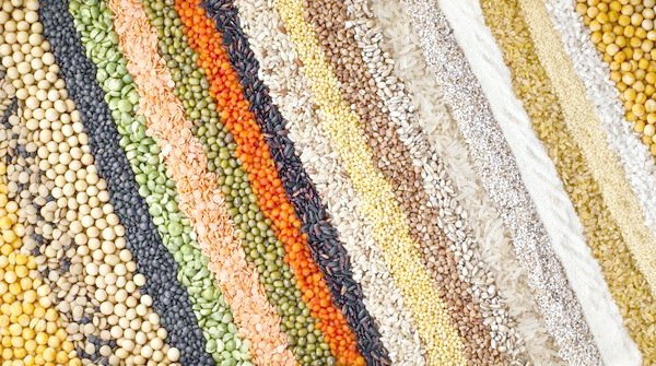 Фото - Плазмові, інкрустовані і ще 6 видів незвичайних насіння