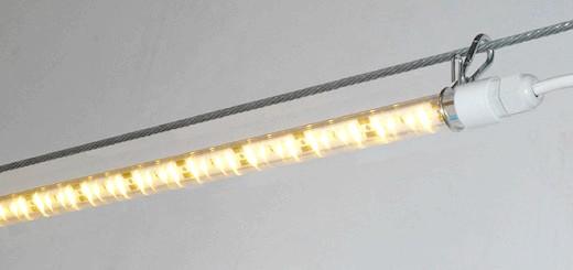 Зображення лампи для освітлення пташника, reserv.ru