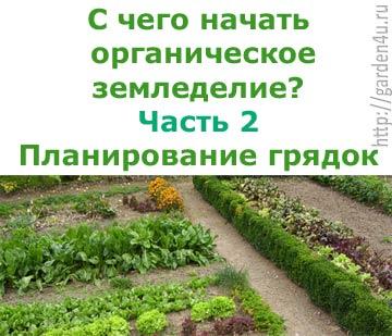 Фото - З чого почати органічне землеробство? частина 2. планування грядок на городі