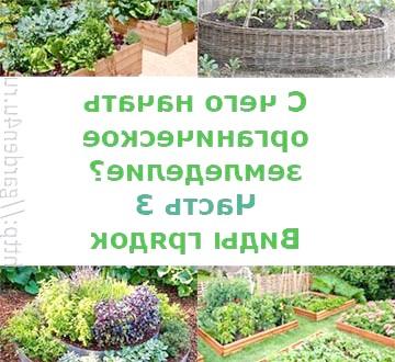 Фото - З чого почати органічне землеробство? частина 3. види грядок