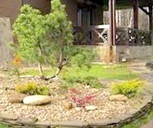 Фото - Сад в японському стилі. стиль бонсай