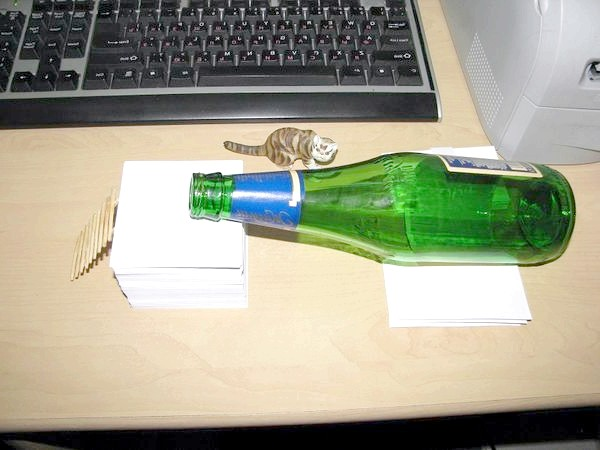 Пляшка-пастка
