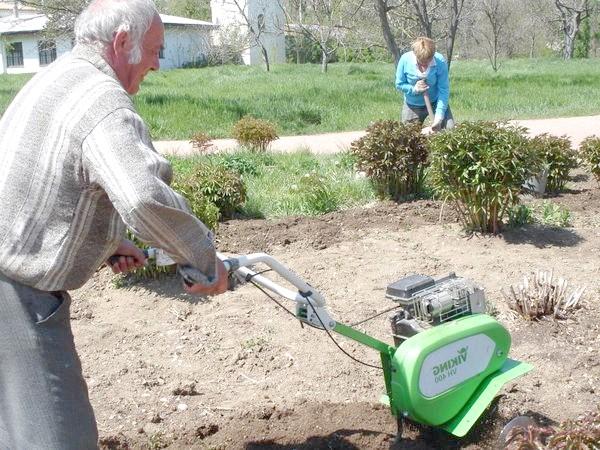Фото - Сезонні роботи в саду і городі: кінець квітня - початок травня